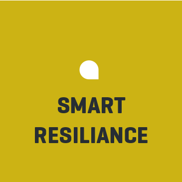 SMART-RESILIENCE